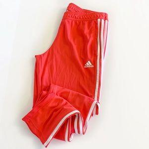 Adidas Tiro 19 Soccer Training Jogger Track Pants
